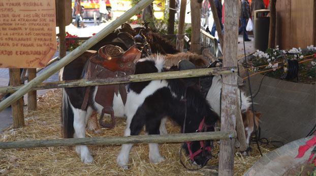 poney-navidad-centro-sevillaconlospeques