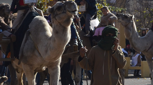 navidad-reyes-camello-sevillaconlospeques