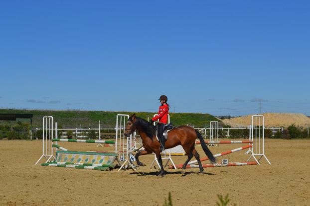 caballos-hipicamonteverde-campusdeverano-sevillaconlospeques