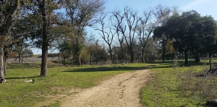 Parques de Sevilla: Parque del tamarguillo | Sevilla con los peques