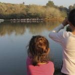 Cañada de los pájaros, niños observando las aves | Sevilla con los peques