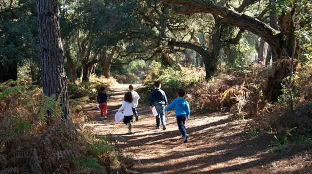 Descubre Naturaleza sierra de Cazorla 00 | Sevilla con los peques