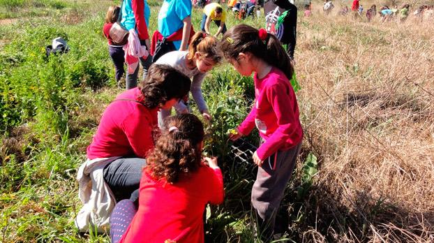 niños-sevilla-reforestación-pachilofeos-sevillaconlospeques