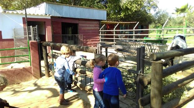 sevilla-niños-campamento-semana-santa-sevillaconlospeques