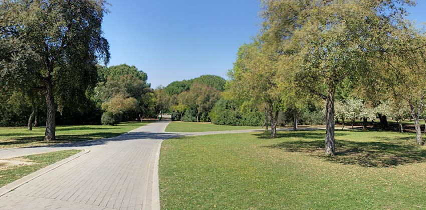 Parque del Alamillo de Sevilla | Sevilla con los peques