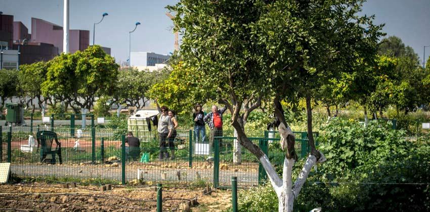 Huerto Urbano del Parque del Alamillo | Sevilla con los peques