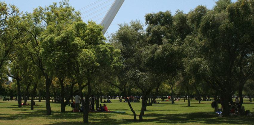 Actividades en Inglés para familias en Parque del Alamillo| Sevilla con los peques