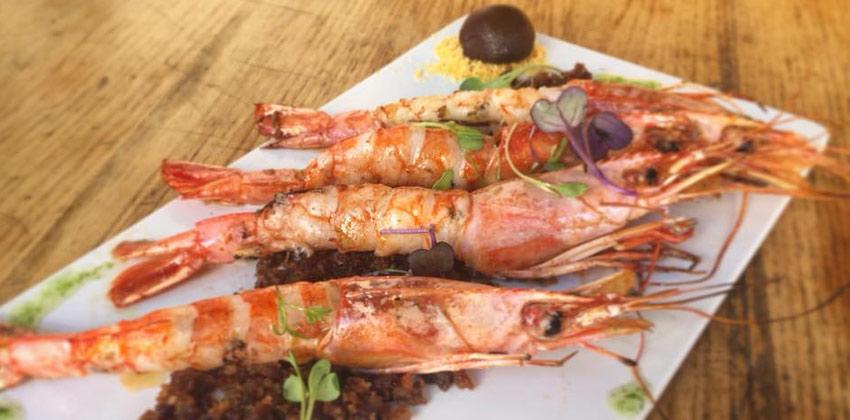 Restaurante Rocola Sevilla Langostinos a la plancha | Sevilla con los peques