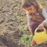 Huertos Urbanos: Talleres gratuitos para familias con niños de Sevilla 00   Sevilla con los peques